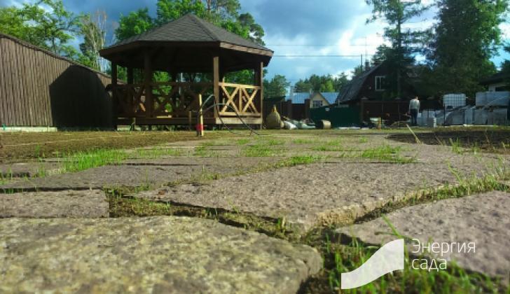 Швы в камнях с сеянным газоном.