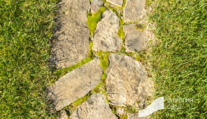 Дорожки  из натурального камня.